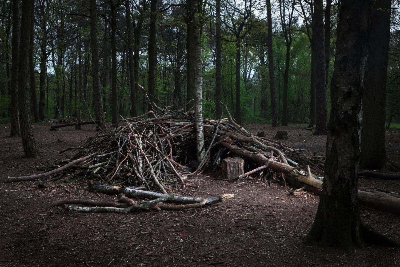 Shelter 03